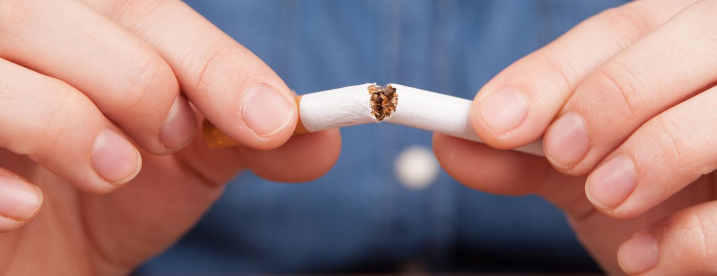 das rauchfrei programm